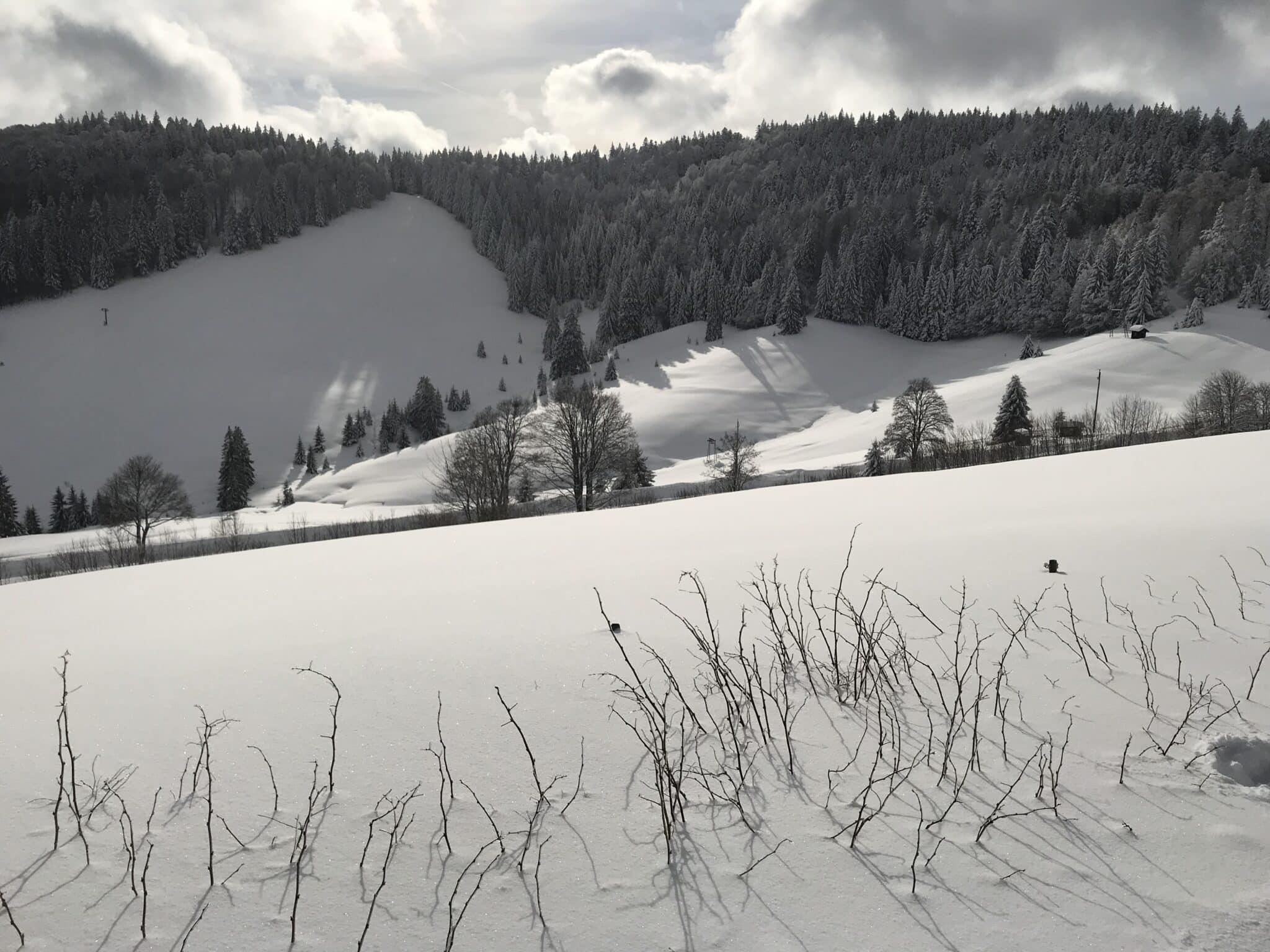 Winterlandschaft Waldhotel-Auerhahn